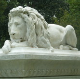 Ayer Lion